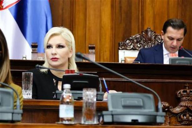 Mihajlović: Vlada ne ukida inženjersku komoru, štiti struku