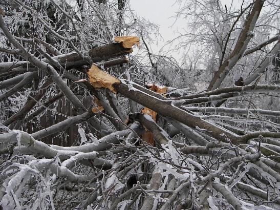 U Konjicu i Jablanici proglašeno stanje prirodne nepogode