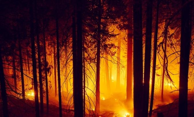 Više od 630 nestalih u šumskim požarima u Kaliforniji